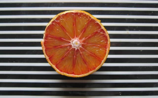 carpelles Citrus sinensis