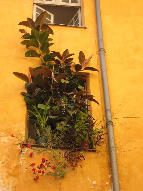 caoutchouc dans le vieux-Nice