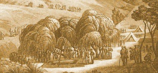 http://www.lautresaintehelene.com/articles-willow-tomb-1821b.jpg