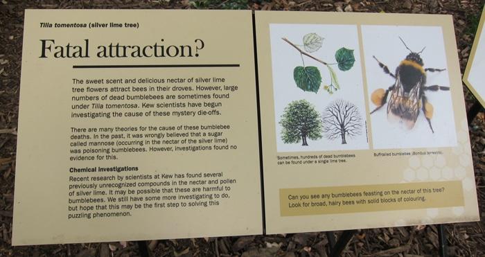 panneau explicatif à Kew Gardens