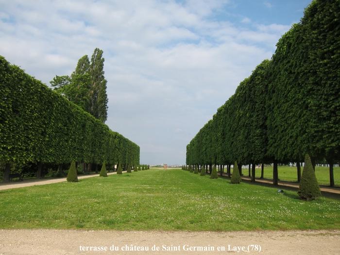 jardins à la française Château de St Germain en Laye