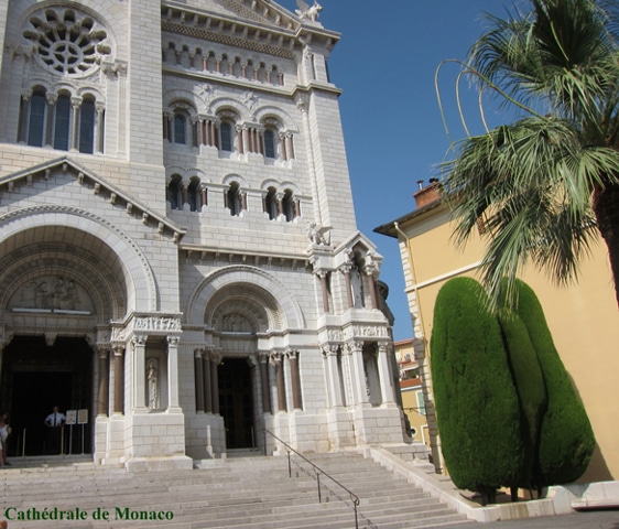 Cyprès de Provence Cathédrale de Monaco