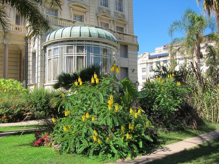 Séné africain - Jardin du Musée Masséna à Nice (06)
