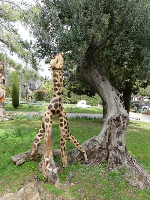 La girafe des jardiniers du Parc de Cap Martin